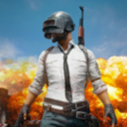 PUBG( PLAYERUNKNOWN'S BATTLEGROUNDS )コミュニティ